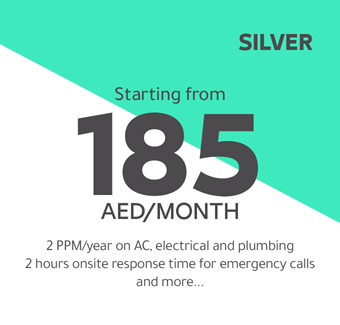 Silver starting from 185 AED/month